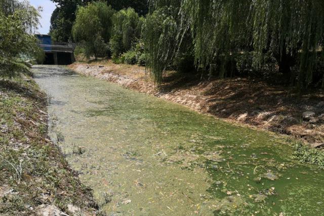 扬州横沟河花费200万整治2个月 源头活水仍未来