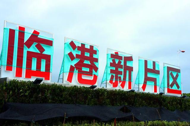 """朱芝松:推动临港新片区成为""""面向亚太的国际枢纽城市"""""""