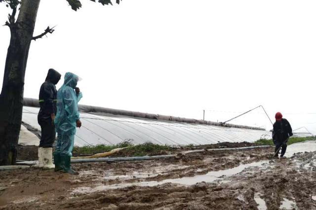 27日开始 全省将经历一次强降水(附天气预报)