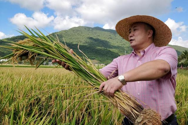 袁隆平:希望自己能活到100岁 为祖国做出更多贡献