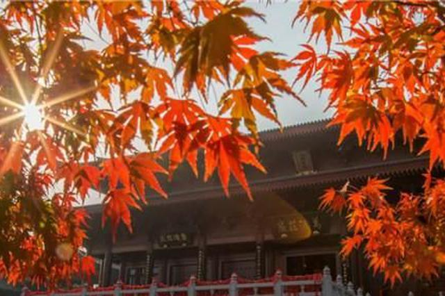 南京已入秋!近10年最晚