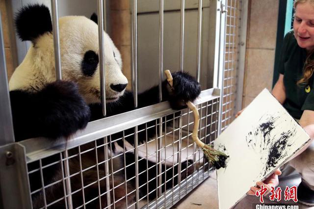 国际熊猫日 我萌我骄傲