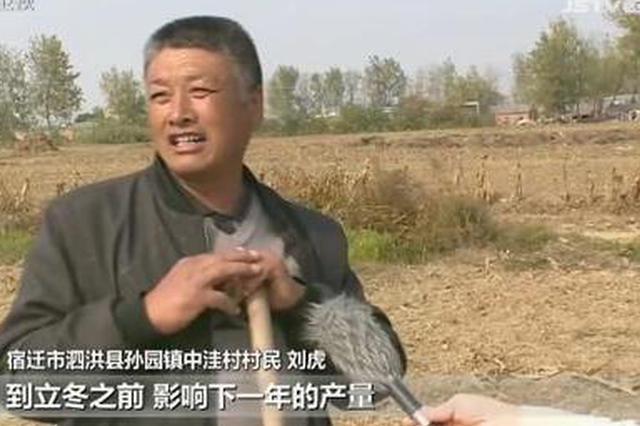 江苏大部分地区遭遇气象干旱 部分小麦秋播受影响