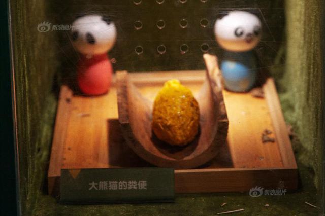 武汉动物园展出大熊猫便便 游客排队闻:真香!