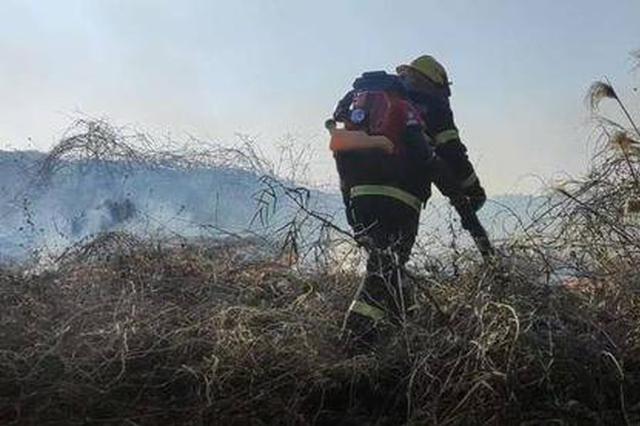 上坟烧纸烧了7亩山林 溧阳一女子被拘留
