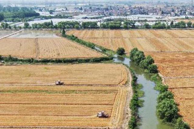 江苏发布30条措施促乡村振兴 保两个现代化率先实现