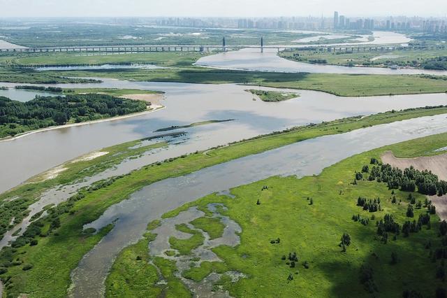 """飞""""阅""""黑龙江太阳岛国家湿地公园"""