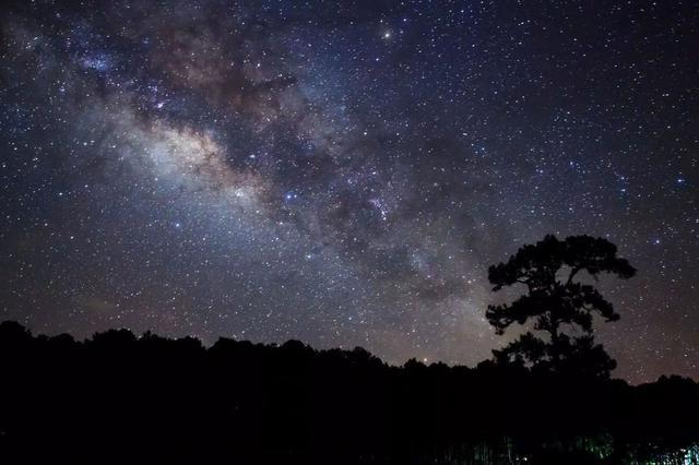 """夜空中最亮的星!10日黎明可赏2020最亮""""启明星"""""""