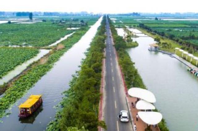江苏上半年乡村休闲旅游农业迎客达到1亿人次