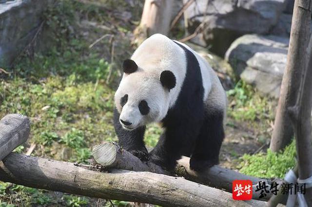 9月起 南京这些景区迎来免费开放日