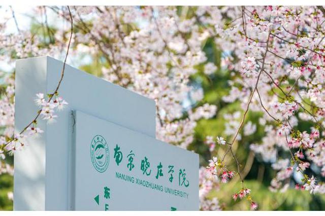 南京晓庄学院幼儿师院一女生攀爬围栏夜不归宿 被通报批评