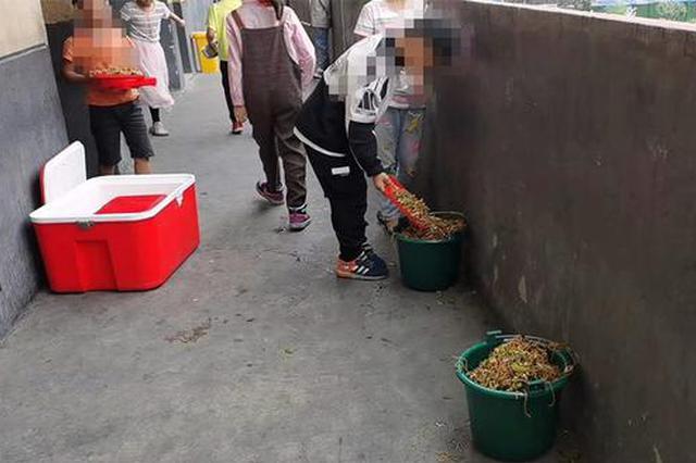 """阜阳一小学学生将营养餐倒掉""""溢出垃圾桶"""" 校方:众口难调"""