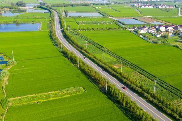 江苏率先实现四级公路全覆盖:开车驶入江南水乡图画中