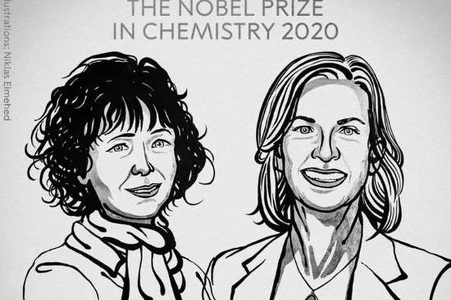 """发明""""基因剪刀""""改写""""生命密码"""" 两名女科学家分享诺贝尔化学奖"""