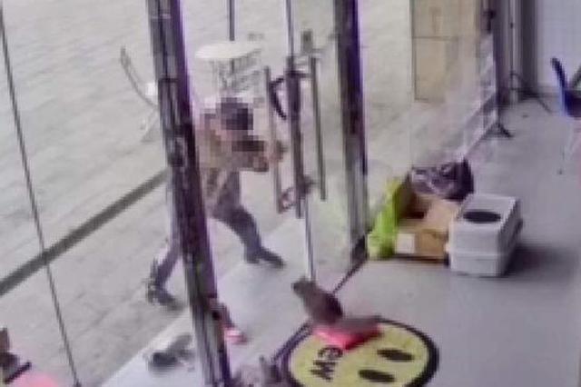 南京一店铺内小猫遭路过男孩虐打 店主要求家长书面道歉被拒