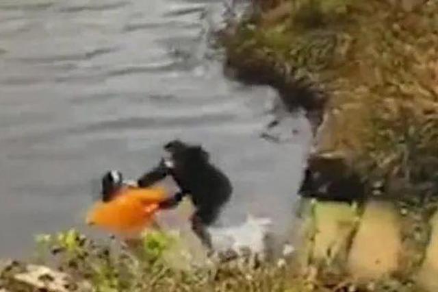 南京溧水一女子将闺蜜推入水库 二人均溺水身亡