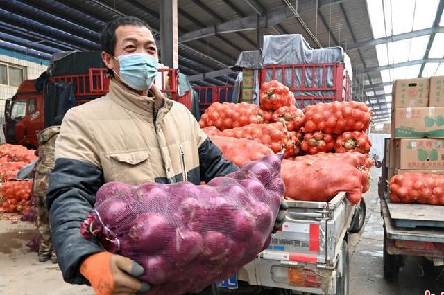 石家庄市桥西蔬菜批发市场恢复正常营业