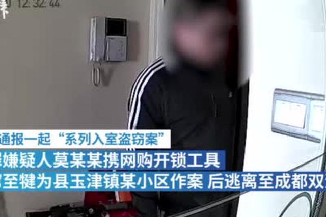 """""""网红窃贼""""多次入室盗窃,被抓获并刑拘"""
