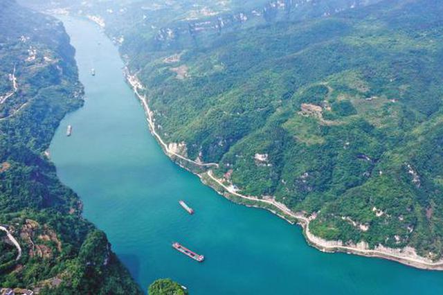 """如何为长江""""治病""""?人大代表:重点降低水利工程对河流的破"""