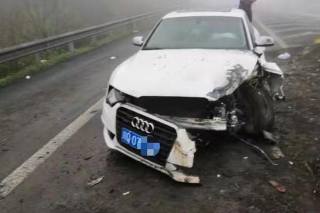 司机醉驾撞上护栏后逃逸妻子试图顶包,被判拘役两月