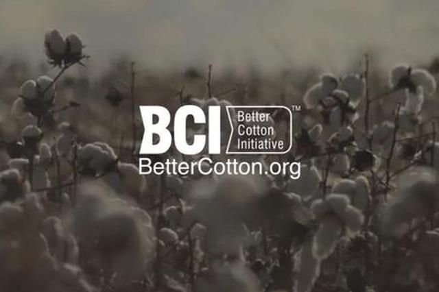 """起底抵制新疆棉花的""""幕后推手""""  BCI到底是啥来头?"""