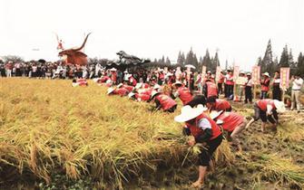 江苏旅游多彩活动 绘就中秋节日盛景