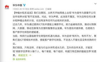 华为辟谣:与袁隆平公司合作种植水
