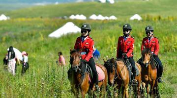 女子骑警队:草原上的靓丽风景