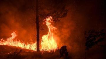 葡萄牙中部爆发山火 现场烈焰滚滚照亮夜空