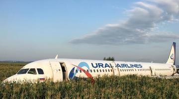 客机发动机被鸟击中紧急迫降