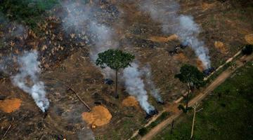 巴西亚马孙雨林大火持续 浓烟滚滚