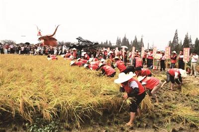 江苏旅游多彩活动 绘就中秋节日