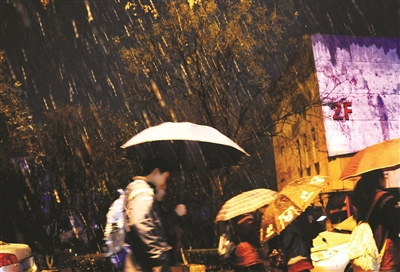 南京昨晚的雪越下越大。新华报业视觉中心记者 乐涛 摄