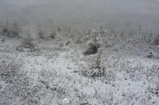 """今夜起至15日迎雨雪天气 明后两天""""冻到骨子里"""""""