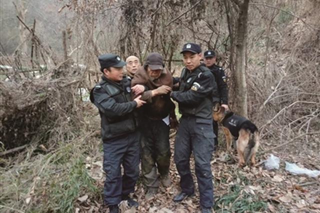 南京一8旬翁失踪3天 警犬30分钟成功搜救