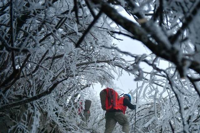 24-28日江苏将有持续雨雪冰冻天气 局部有大暴雪