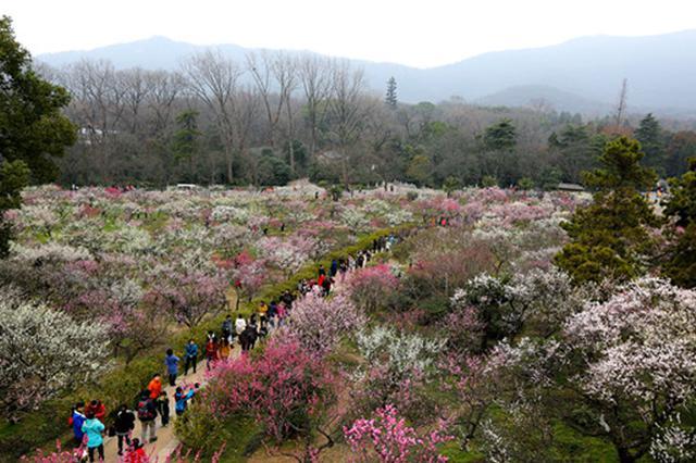 春节不需跑远 家门口的游园活动场场精彩