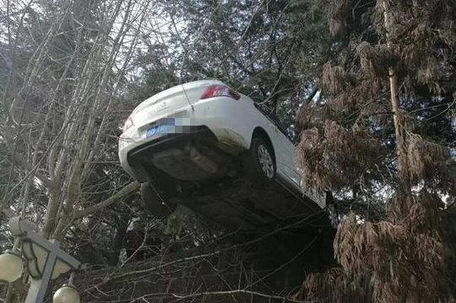 """忘拉手刹!轿车滑行被电线挂住""""悬浮""""7米高坎"""