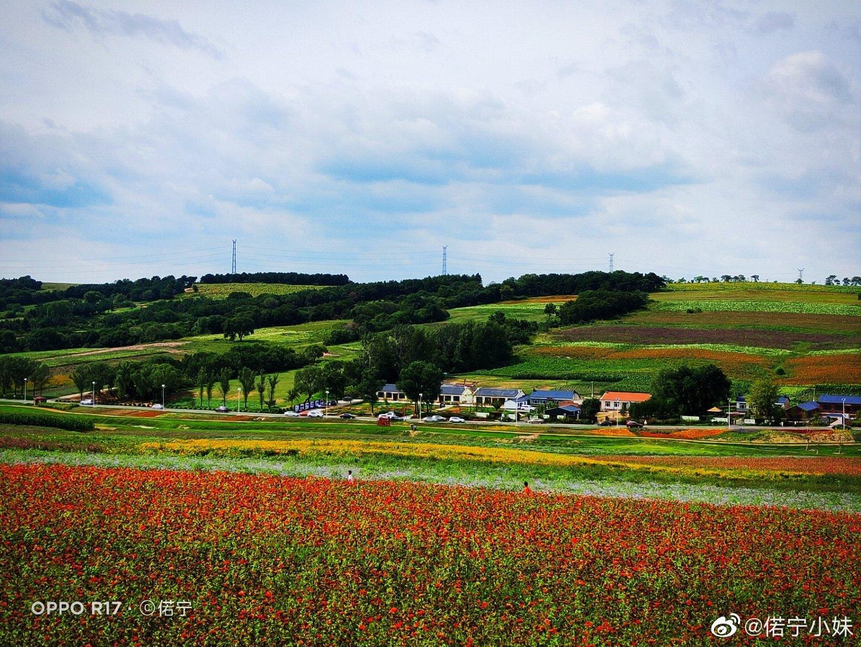 百花开遍漫山里 乡村小路一径通