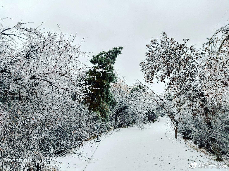 吉度光影:晨起开门雪满城 雪晴云淡日光寒