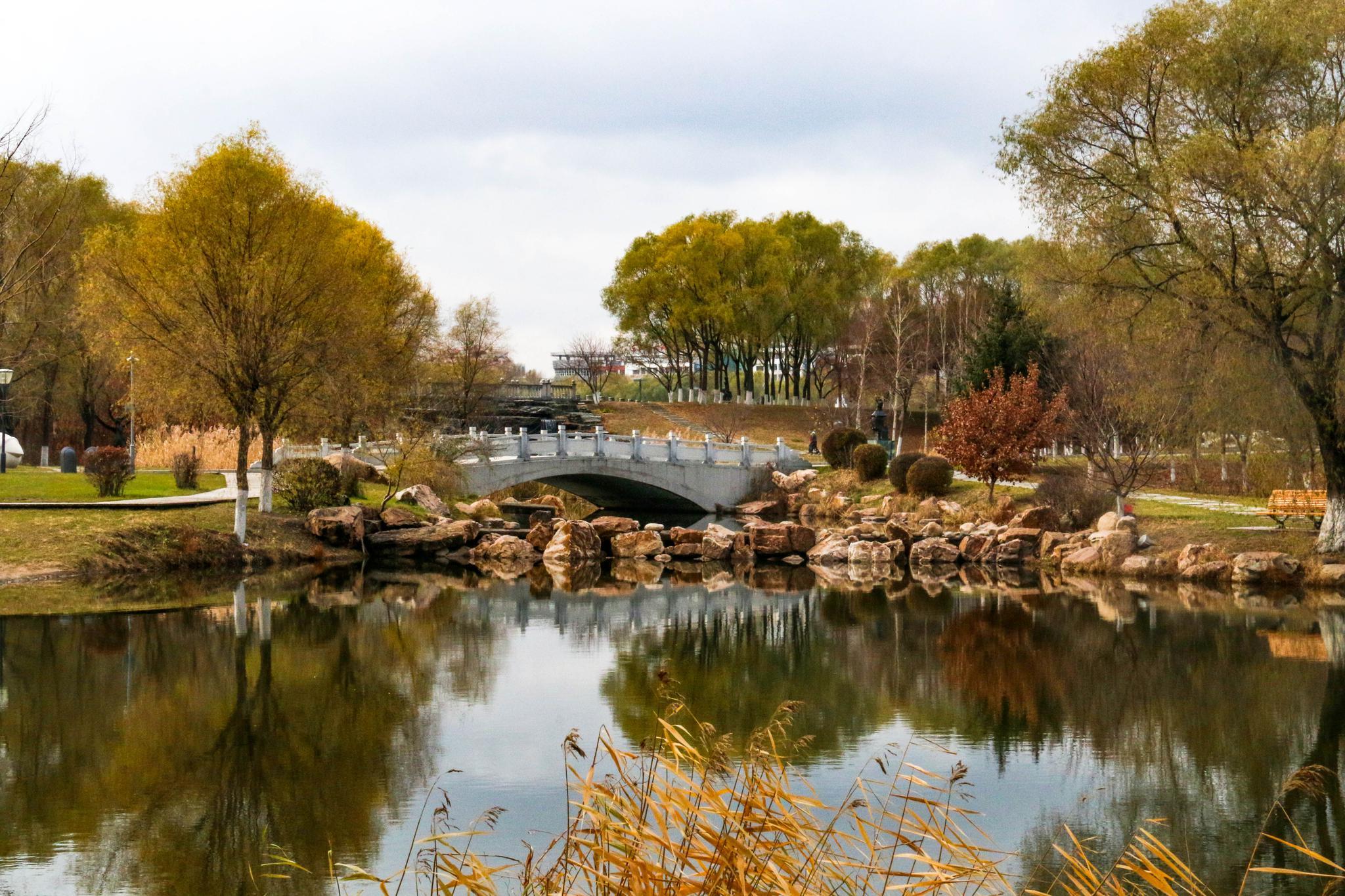 雕塑公园:微阳下乔木 远色隐秋山