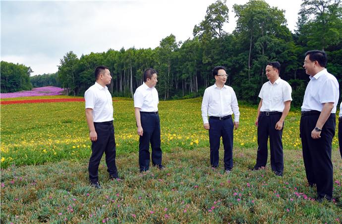 8月18日至19日,吉林省委副书记、省长景俊海到白山市调研。长白山国际旅游度假区高尔夫球场已经整治改建为花海公园、运动公园。景俊海第三次到现场检查督导。邹乃硕/摄