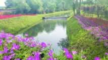 """""""河长制""""绘就九台水清岸绿美丽画卷"""