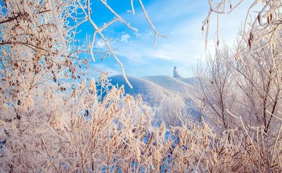 冬雪飞花 六鼎山良辰美景