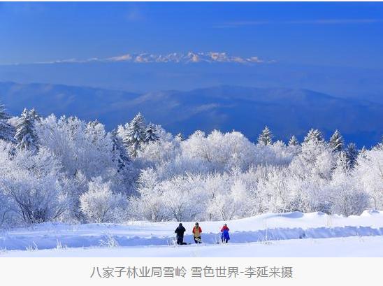 长白山森工集团全力推进森林旅游产业发展