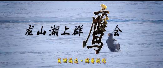 美丽中国·鲜到延边!鹰飞鹤舞 候鸟天堂!
