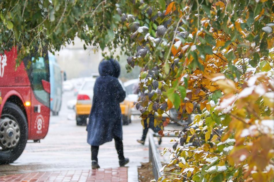 早知冬将近 飞雪入春城