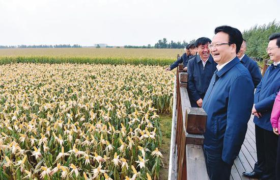 9月22日,吉林省委副书记、省长景俊海来到四平市梨树县国家百万亩绿色食品原料(玉米)标准化生产基地,实地察看黑土地保护性耕作和玉米长势情况。记者邹乃硕摄
