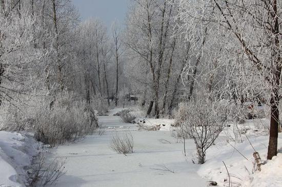 这里每年冬季都有雾淞奇观出现