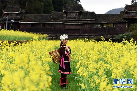村民在广西龙胜各族自治县乐江镇地灵村的油菜花田留影。